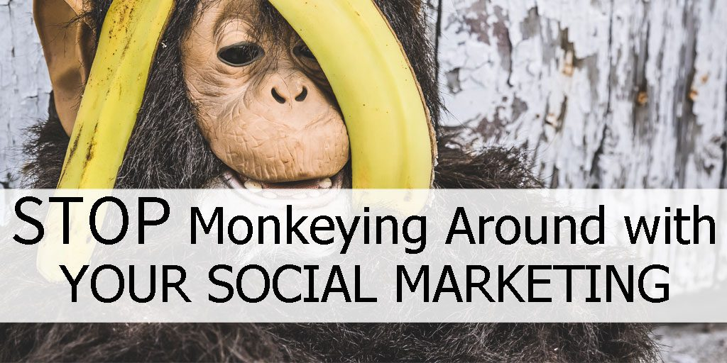 Stop Monkeying Around with Your Social Marketing